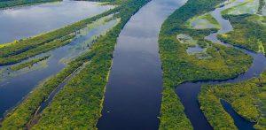 De Acordo com Pesquisa, Brasil Perdeu 89 Milhões de Hectares de Vegetação Natural nos últimos 34 Anos