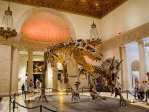 Confira uma Lista de Museus em Los Angeles com Entrada Gratuita