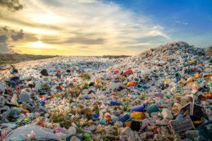 Poluição por Plásticos no Planeta: é Preciso Reeducar a População