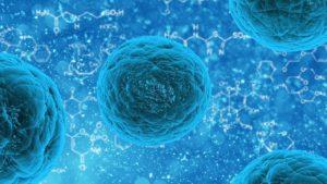 De Acordo com Estudo Recente, Resfriado Comum Pode Dar Imunidade Contra a Covid-19