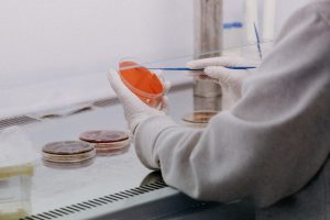 Variante Brasileira do Coronavírus é Detectada em San Diego