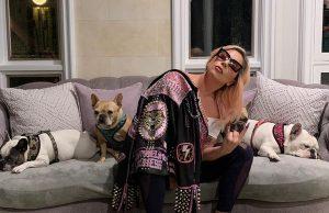 Em Los Angeles: 5 suspeitos são Presos pelo Roubo dos Cães de Lady Gaga