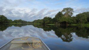 Um Passeio Inesquecível pelo Rio Amazonas