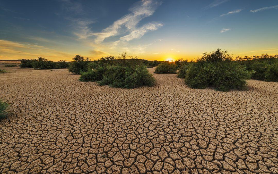 Aquecimento Global Atinge Níveis sem Precedentes; Califórnia Vive seu Ano mais Seco em um Século
